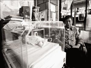 Keajaiban Inkubator Gratis