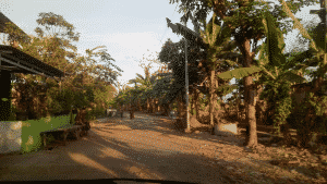 Jalan Sore jalan sore Jalan Sore Desa Prasung Tani