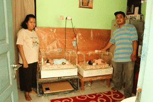 inkubator gratis Inkubator Gratis, Penyambung Nyawa Bayi Prematur (Anadolu Agency, 18 Mei 2018) Gina dan Gita